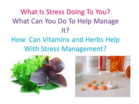 What Is Stress Doing To You? What Can You Do To Help Manage It? How Can Vitamins and Herbs Help With Stress Management?