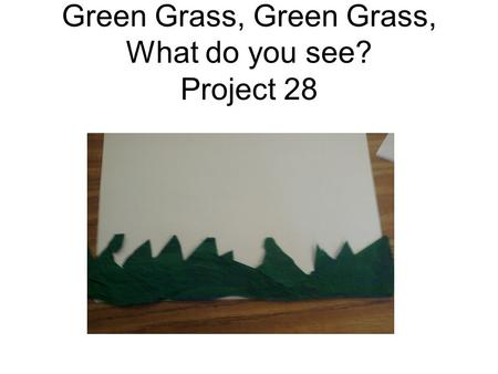Green Grass, Green Grass, What do you see? Project 28.