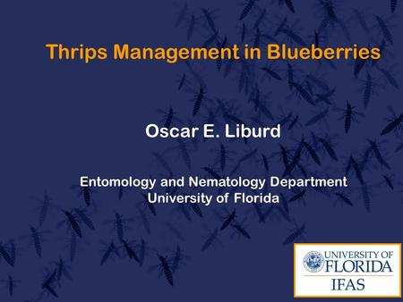 Thrips Management in Blueberries Oscar E. Liburd Entomology and Nematology Department University of Florida.