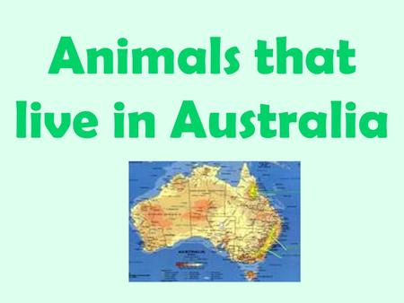 Animals that live in Australia. Koala Koala's are probably Australia's best known animals. Koalas are often referred to as a Koala bear, however they.