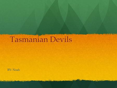 Tasmanian Devils BY: Noah Introduction I hope you enjoy my report about the Tasmanian Devil.