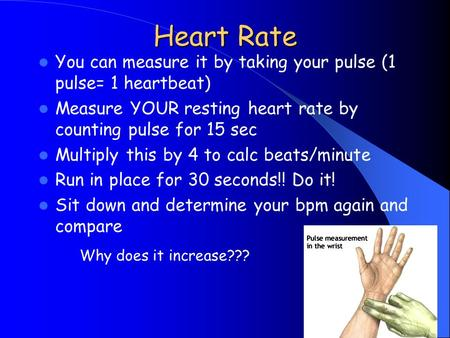 Heart Rate You can measure it by taking your pulse (1 pulse= 1 heartbeat) Measure YOUR resting heart rate by counting pulse for 15 sec Multiply this by.