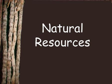 Natural Resources.