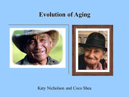 Evolution of Aging Katy Nicholson and Coco Shea. Why do organisms age?