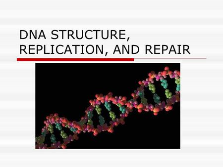 DNA STRUCTURE, REPLICATION, AND REPAIR. DNA-Structure  Double helix Hydrophobic nitrogen bases on the inside Hydrophilic phosphate-sugar backbones on.