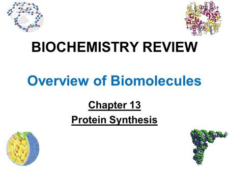 BIOCHEMISTRY REVIEW Overview of Biomolecules Chapter 13 Protein Synthesis.
