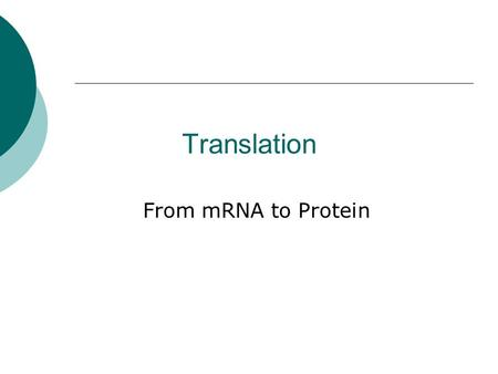 Translation From mRNA to Protein. Translation Overview.
