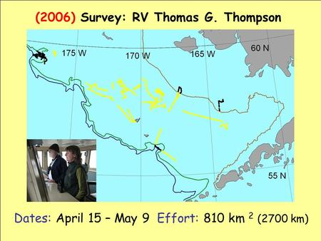 Dates: April 15 – May 9 Effort: 810 km 2 (2700 km) (2006) Survey: RV Thomas G. Thompson.