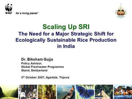 Scaling Up SRI The Need for a Major Strategic Shift for Ecologically Sustainable Rice Production in India Dr. Biksham Gujja Policy Advisor, Global Freshwater.
