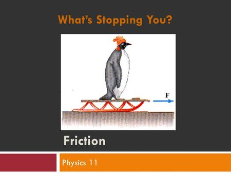 Friction Physics 11 What's Stopping You?. Humour again..
