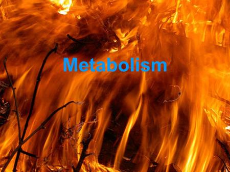 Metabolism Cell Energetics Metabolism = total of all the chemical reactions taking place in an organism.