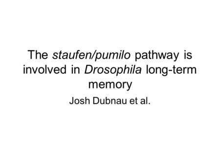 The staufen/pumilo pathway is involved in Drosophila long-term memory Josh Dubnau et al.