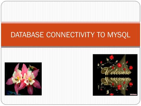 DATABASE CONNECTIVITY TO MYSQL. Introduction =>A real life application needs to manipulate data stored in a Database. =>A database is a collection of.
