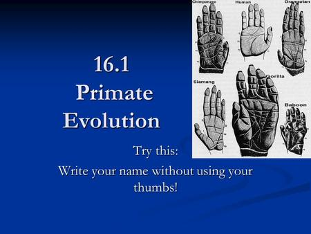 16.1 Primate Evolution Try this: Write your name without using your thumbs!