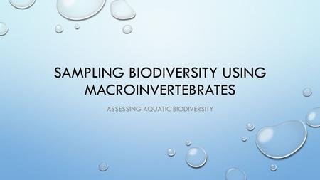 Sampling Biodiversity Using macroinvertebrates