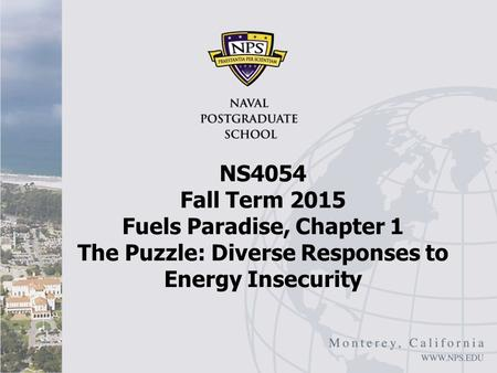 NS4054 Fall Term 2015 Fuels Paradise, Chapter 1 The Puzzle: Diverse Responses to Energy Insecurity.