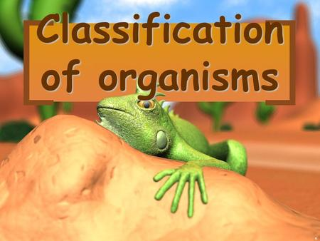 1 Classification of organisms. 2 There are 13 billion known species of organisms There are 13 billion known species of organisms This is only 5% of all.