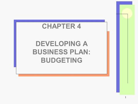 1 CHAPTER 4 DEVELOPING A BUSINESS PLAN: BUDGETING.