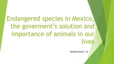 Endangered species in Mexico, the goverment's solution and importance of animals in our lives Mariana Garza 1°B.
