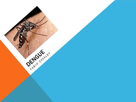 DENGUE FABIO ZAVALEY. WHAT IS DENGUE? Dengue is a disease spread by mosquitos Not all mosquitos carry dengue There are 3 major diseases that the mosquitos.