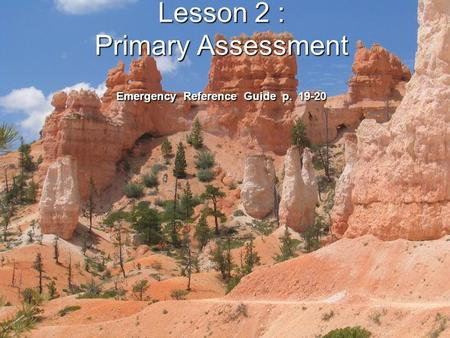 Lesson 2 : Primary Assessment Emergency Reference Guide p. 19-20.