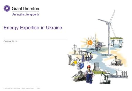 Energy Expertise in Ukraine