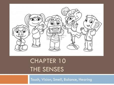 CHAPTER 10 THE SENSES Touch, Vision, Smell, Balance, Hearing.