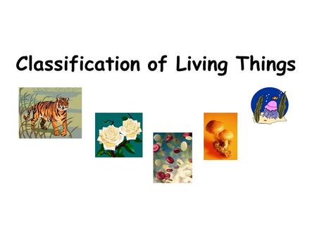 Classification of Living Things. Taxonomy: Classification Taxonomy Song.