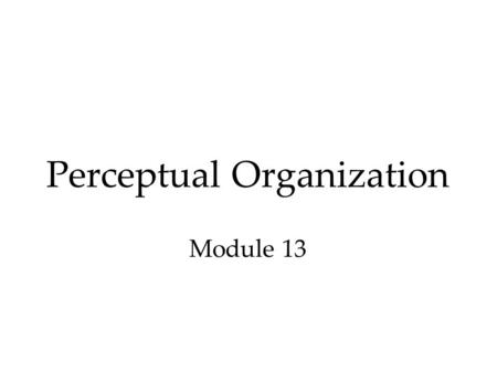 Perceptual Organization Module 13. Overview Perceptual Organization  Form Perception  Depth Perception  Perceptual Constancy.