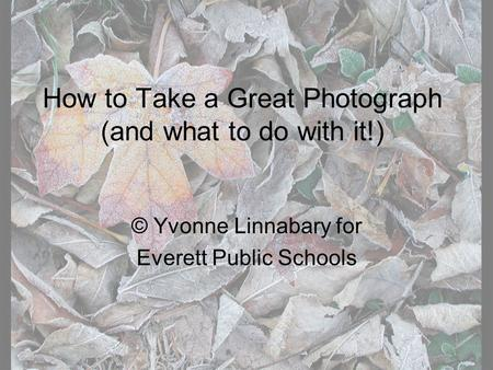 How to Take a Great Photograph (and what to do with it!) © Yvonne Linnabary for Everett Public Schools.