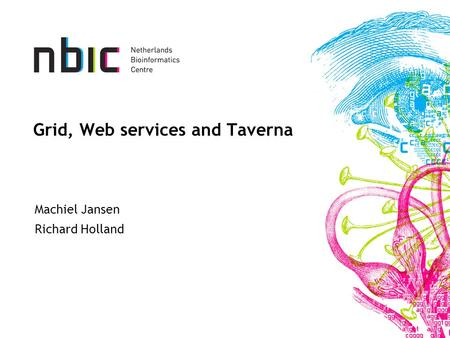 Grid, Web services and Taverna Machiel Jansen Richard Holland.