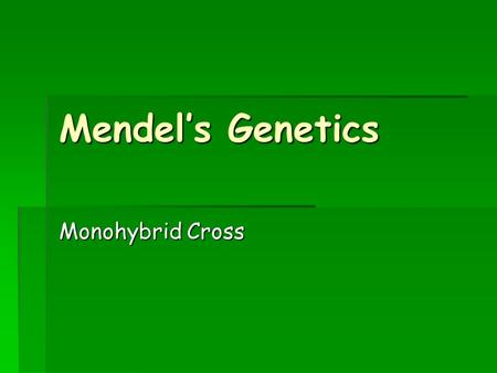 Mendel's Genetics Monohybrid Cross. Gregor Mendel  As discussed last class, he was an Austrian monk  He worked at St. Thomas Monastery  He studied.