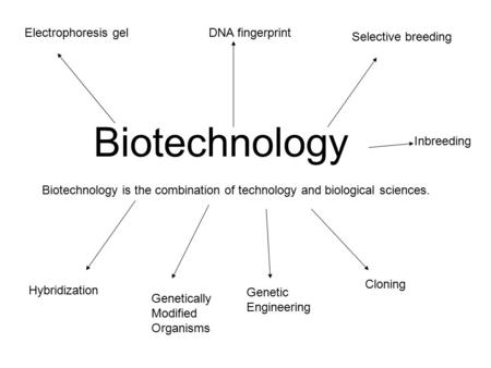Biotechnology Biotechnology is the combination of technology and biological sciences. Electrophoresis gelDNA fingerprint Selective breeding Hybridization.