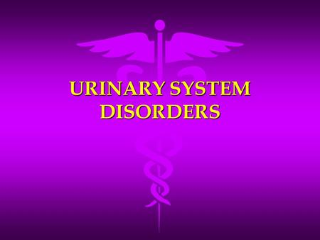 URINARY SYSTEM DISORDERS. Cystitis (bladder infection) An inflammation of the urinary bladder An inflammation of the urinary bladder More common in women.