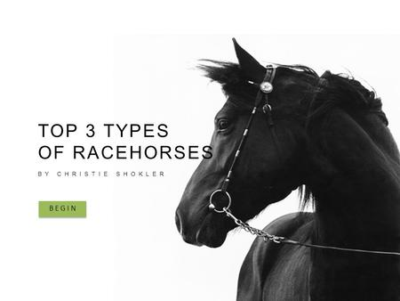 TOP 3 TYPES OF RACEHORSES BY CHRISTIE SHOKLER BEGIN.