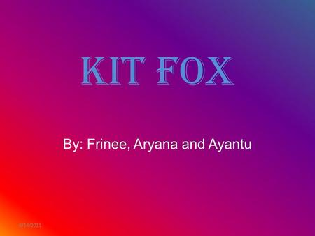 6/14/2011 Kit Fox By: Frinee, Aryana and Ayantu. 6/14/2011 What does this animal look like?