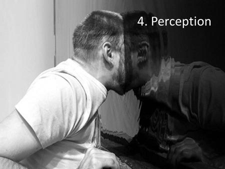 4. Perception. Lesson 1 Empiricism Common-sense realism Perceptual illusions.