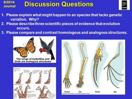 Discussion Questions Discussion Questions 9/25/14 Journal 1.Please explain what might happen to an species that lacks genetic variation. Why? 2.Please.