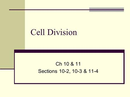 Cell Division Ch 10 & 11 Sections 10-2, 10-3 & 11-4.