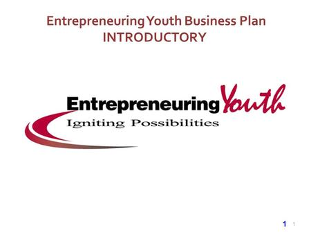 1 Entrepreneuring Youth Business Plan INTRODUCTORY 1.