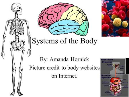 Systems of the Body By: Amanda Hornick Picture credit to body websites on Internet.
