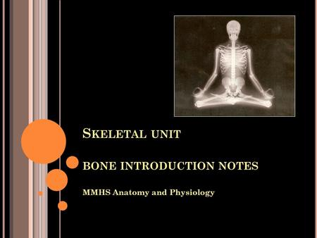 S KELETAL UNIT BONE INTRODUCTION NOTES MMHS Anatomy and Physiology.