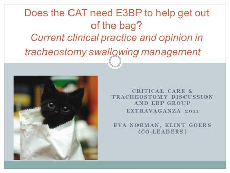 CRITICAL CARE & TRACHEOSTOMY DISCUSSION AND EBP GROUP EXTRAVAGANZA 2011 EVA NORMAN, KLINT GOERS (CO-LEADERS) Does the CAT need E3BP to help get out of.