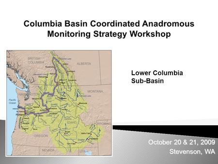 October 20 & 21, 2009 Stevenson, WA Columbia Basin Coordinated Anadromous Monitoring Strategy Workshop Lower Columbia Sub-Basin.