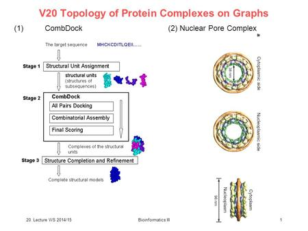 20. Lecture WS 2014/15Bioinformatics III 1 V20 Topology of Protein Complexes on Graphs (1)CombDock(2) Nuclear Pore Complex.