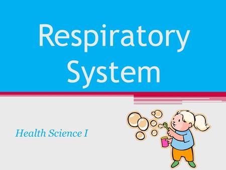 Respiratory System Health Science I. Structures of Upper Respiratory System Nose Sinuses Pharynx Epiglottis Larynx Trachea.