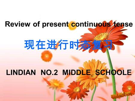 Review of present continuous tense 现在进行时态复习 LINDIAN NO.2 MIDDLE SCHOOLE.