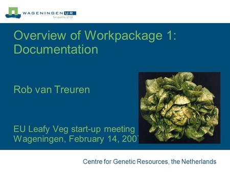 Centre for Genetic Resources, the Netherlands Overview of Workpackage 1: Documentation Rob van Treuren EU Leafy Veg start-up meeting Wageningen, February.