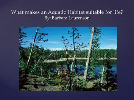 What makes an Aquatic Habitat suitable for life? By: Barbara Laurenson.