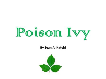 Poison Ivy By Sean A. Katebi